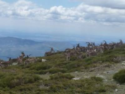 Cuerda Larga - Serie Clásica; la casita del bosque rutas rascafria senderismo hoces del duraton